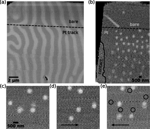 {Thermal nucleation and high-resolution imaging of submicrometer magnetic bubbles in thin thulium iron garnet films with perpendicular anisotropy}