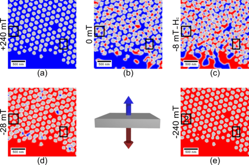 {Geometric control of the magnetization reversal in antidot lattices with perpendicular magnetic anisotropy}