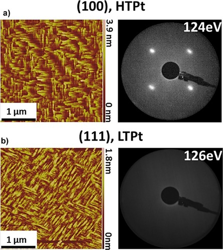 {Preparation and characterisation of epitaxial Pt/Cu/FeMn/Co thin films on (100)-oriented MgO single crystals}