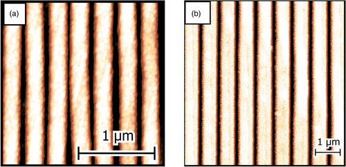 {Tuning the magnetic properties of permalloy-based magnetoplasmonic crystals for sensor applications}